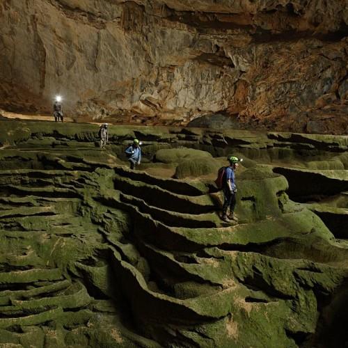 A Caverna Hang Son Doong, no Vietnã tem floresta